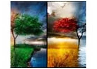 Hayat; yenilgiler, rastlantılar, direniş ve sonuç!