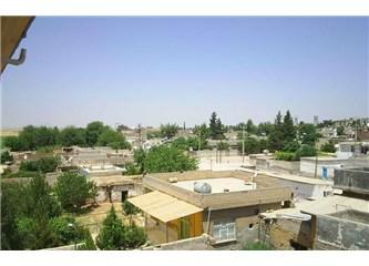Güneydoğu gezisi (1) Peygamberler şehri Urfa/Akçakale