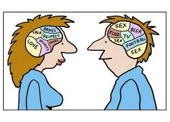 Hermafrodit beyin kullanım kılavuzu