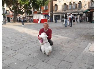 Venedik'de hayvan sevgisi