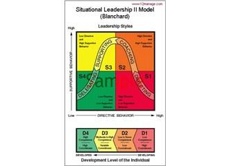 Durumsal liderlik nedir?