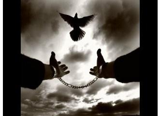 Aklınız ve kalbiniz gerçekten özgür mü?