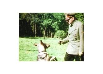 Hitler'in 'konuşan köpek' ordusu
