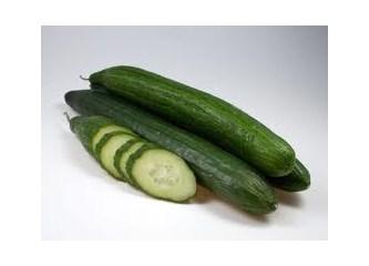 En sağlıklı zayıflama; yiyebildiğin kadar salatalık