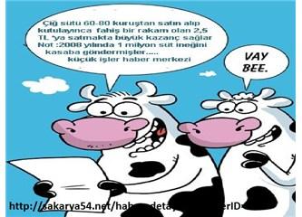 Çiğ Sütün Fiyatı ne olmalı-Eylül 2012