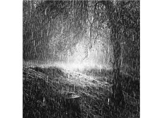 Yağmur yağınca toprak neden kokar?