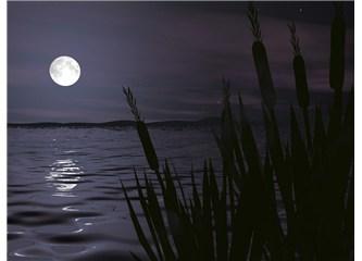 Geceye serenat