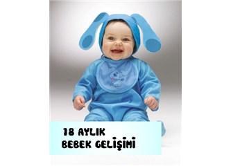 Bebek Gelişimi: 18.Ay