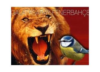 Hangisi daha Avrupalı, Galatasaray mı, Fenerbahçe mi?