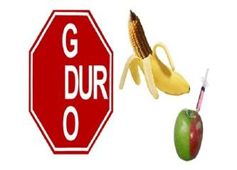 Eskişehir'de Gdo tartışılacak