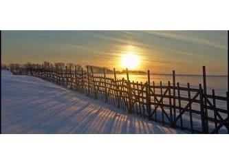 """""""Kış Güneşi, Mutluluk, Huzur, Heidi"""""""