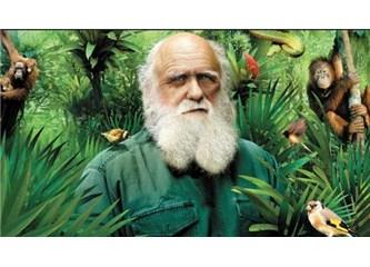 Evrim Teorisi neleri asla açıklayamaz?
