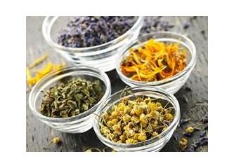 Basura iyi gelen bitkiler basur bitkisel tedavi