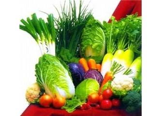 Alkali Beslenme Sanatı (IV) / Sağlıklı bir yaşamın kılavuzu / ''Beslenmenin Diyalektiği' (42)''