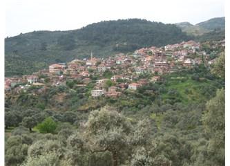 Aydın'da bir Köy Dağyeni.