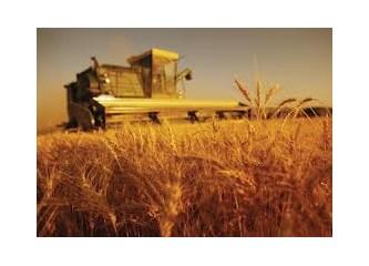 21. Yüzyıl'da tarımımız nereye gidiyor? -2