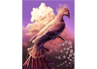 Efsanevi kuş – Zümrüdü Anka Kuşu'ndan alınacak ders