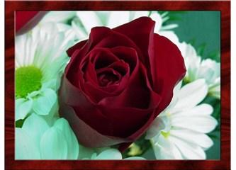 Sen hem dün`üm idin, sen hem bugünümsün, sen hem yarınımsın, sen hem Ahiret`imdede benim sevdiğimsin