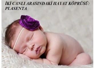 Anne ile bebek arasındaki muhteşem hayat bağı: Plasenta