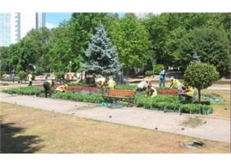 Son durum: Taksim'e 20 yeni ağaç ve 152 bin çiçek dikildi!