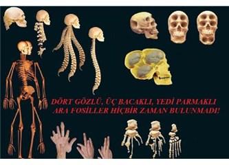 Evrimciler yıkıldı: Tek bir ara fosil bile yok!