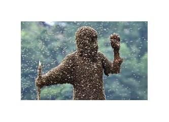 İnsanoğlunun geleceğini bağladığı böcek...