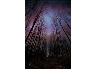 Karanlıkta yürümek