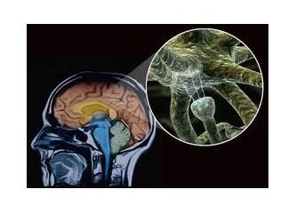 Thetahealing ile beyin kimyasallarınızın dengelenmesini ister misiniz ?