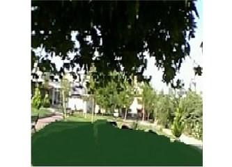 Belediye bahçesi
