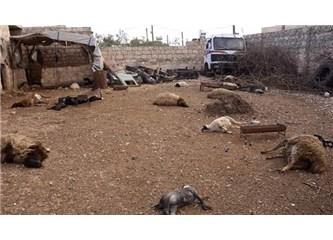 Suriye iç savaşı üzerine...