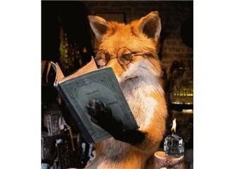 Yazar ve okur