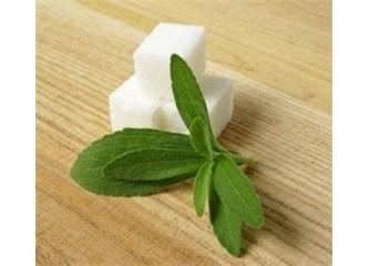 Dr.Kemal Aslan: Diyabet'e (şeker hastalığı) iyi gelen bitkiler & Diabet için şifalı bitkiler