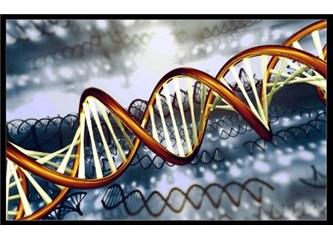 Vücudunuzdaki muhteşem makina: DNA!