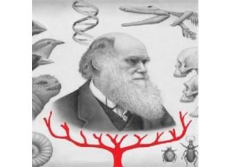 Darwin mantık ve bilim dışı formülüyle dünyayı nasıl kandırdı?