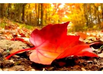 Bir Kasım sabahı... Nostaljinin içinde kaybolmaktı...