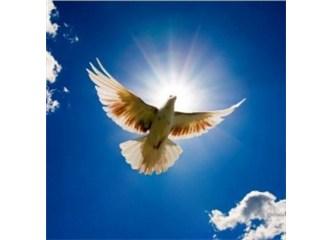 Kuran'daki ayetlerde hayret uyandıran ebced tarihleri -3