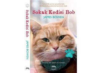 'İlaç' kedi Bob!