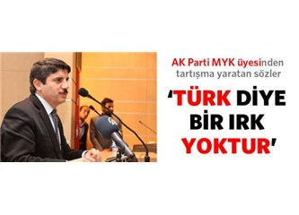 ''Türk diye bir ırk yok!''