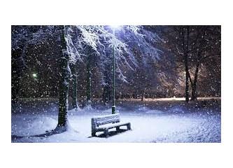 Haiku 106. Kış izlenimleri