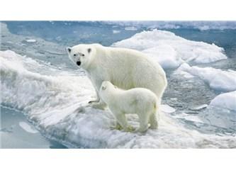 Küresel iklim değişiklikleri sonucunda dünya ne hale gelecek?