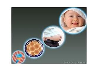 Doğal Siklus Tüp Bebek Tedavileri - Düşük doz ilaç kullanılan Tüp Bebek Tedavileri