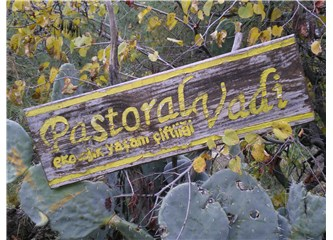 Pastoral vadi
