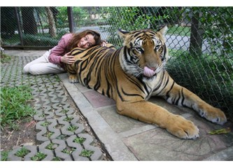 O uykuyu hiç unutmadığım Şehir Chiang Mai