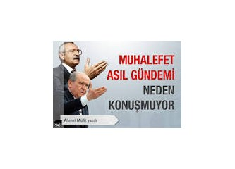 Türkiye muhalefeti üzerine bir kaç söz