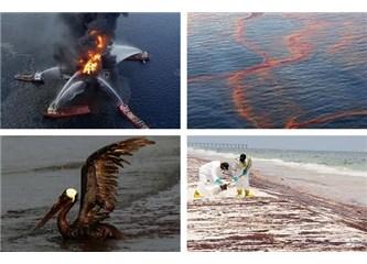 Denizlerde Petrol kirliliği ve Petrol döküntülerinin zararlı etkileri