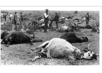 Geçmişten günümüze veteriner hekimler