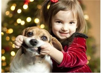 Hayvanlara eziyet eden çocukların suça yönelimi artıyor!