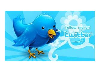 Minik kanatlı mavi kuş