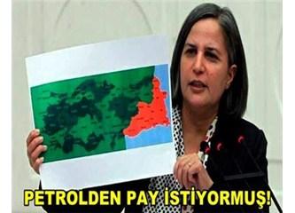 Özerklik için bir adım daha: Petrolden pay!