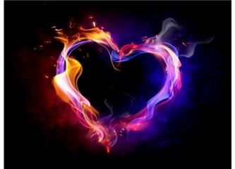 Milyarlarca insanın vücudundaki muhteşem motor: Kalp, Resimler